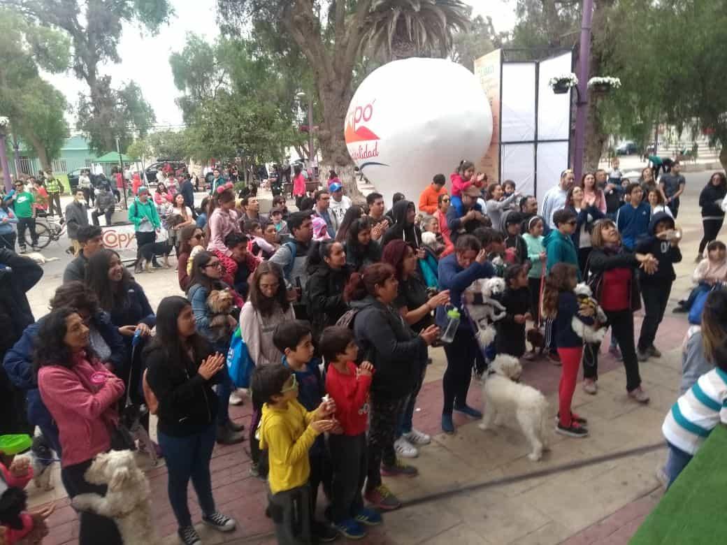 Masiva convocatoria marcó la primera caminata canina 2k – RADIO MARAY