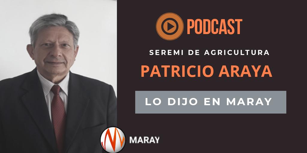 PODCAST Lo Dijo En Maray Patricio Araya Seremi De